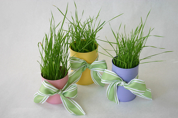 Wheatgrass in Soup Cans Makes Cheap Decor